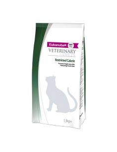 Eukanuba Restricted Calorie Gato