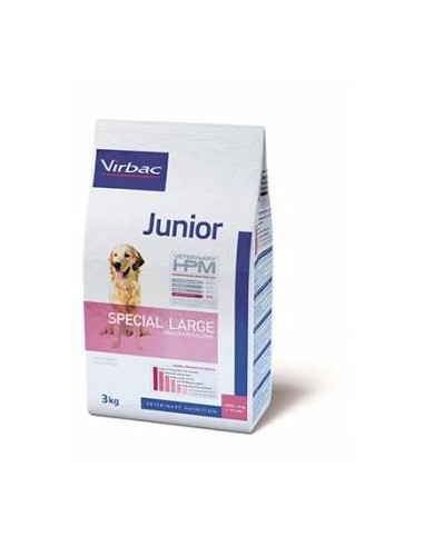 Veterinary HPM Dog Junior Large