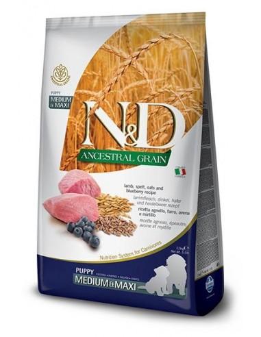 Farmina N&D Cordero y Arandano Puppy Medium-Maxi Low Grain