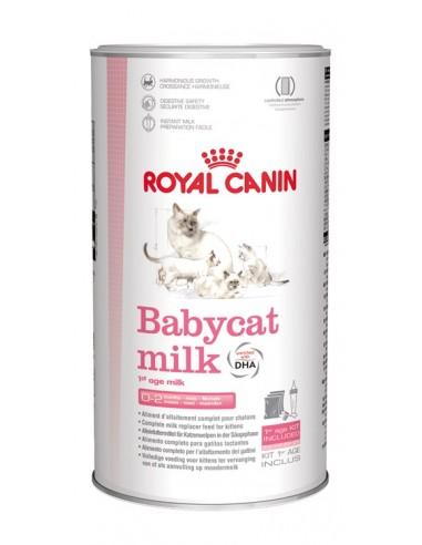 Royal Canin Babycat Leche de sustitución