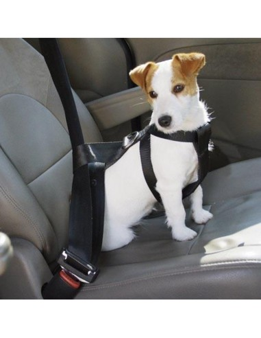 Arnés de Seguridad para el coche de Ibañez