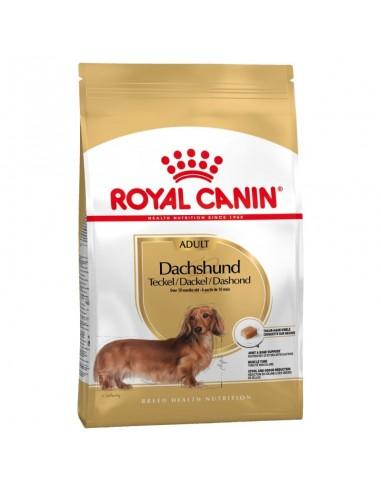 Royal Canin Teckel Adult