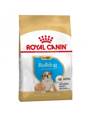 Royal Canin Bulldog Puppy / Junior