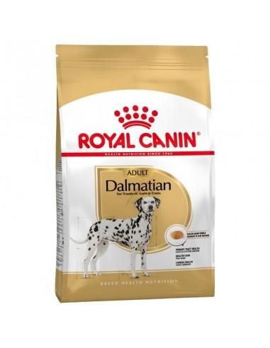 Royal Canin Dalmata Adult