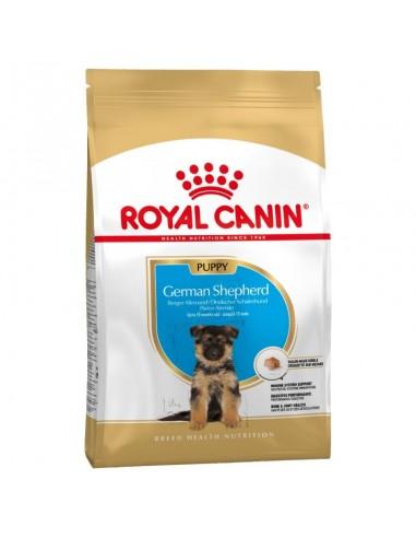 Royal Canin Pastor Alemán Puppy / Junior