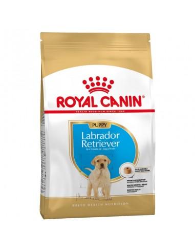 Royal Canin Labrador Retriever Puppy /  Junior