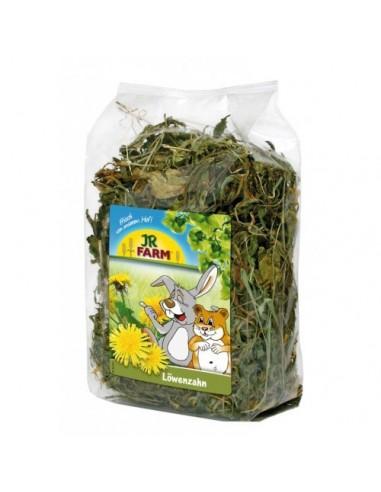 JR Farm Herbs Diente de Leon