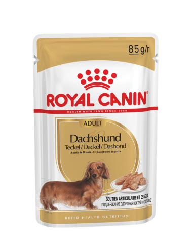 Royal Canin Teckel Adult Sobres