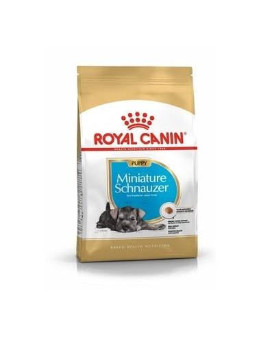 Royal Canin Schnauzer Miniatura Puppy