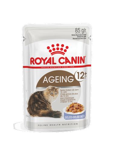 Royal Canin Feline Ageing +12 Gelatina